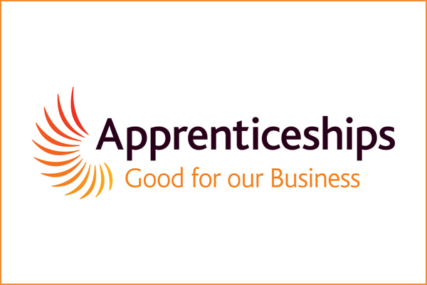 The value of apprentices